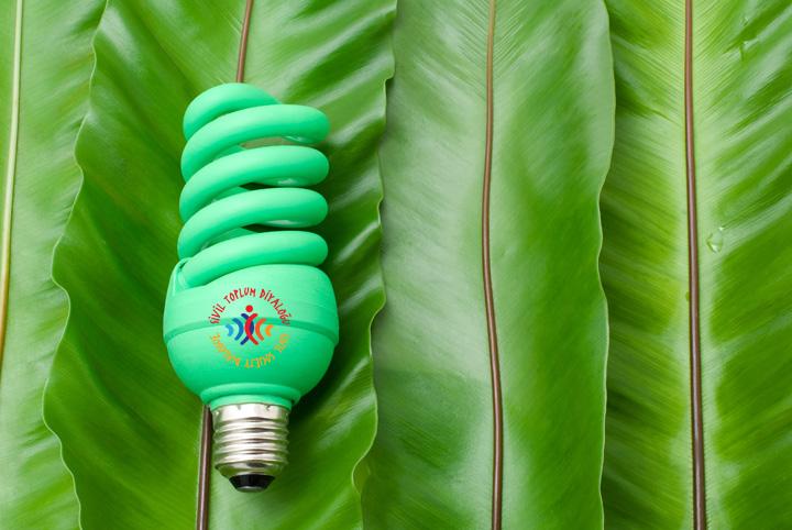 Yeşil İklim Yeşil Ekonomi